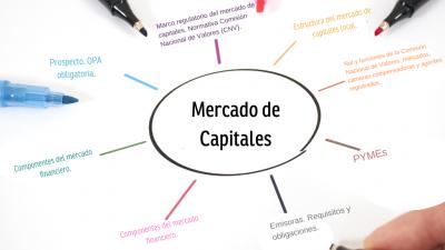 Instituciones y marco normativo del mercado de capitales PMC2021